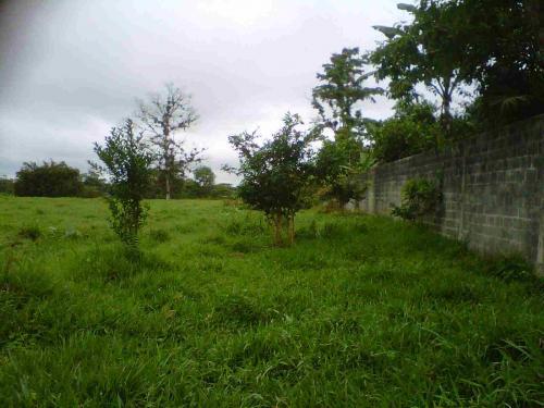 Vendo terreno en Santo Domingo vía Chone.