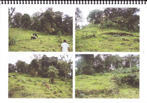 Vendo propiedad de 110 hectareas en Mindo