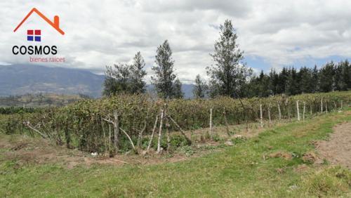 Vendo terreno de 10.200 m2 en Otavalo sector Quinchuqui