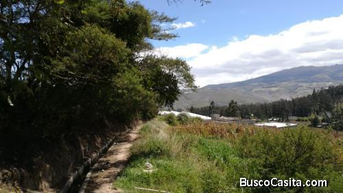 Terreno $ 40.000 , 1020 metros Cuzubamba - Cayambe