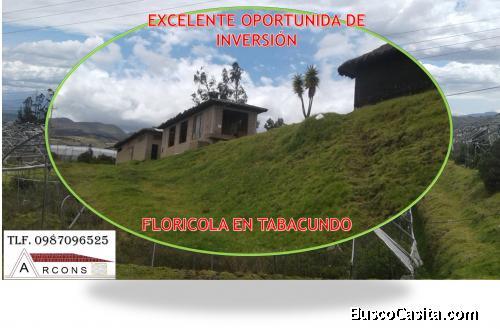 OPORTUNIDAD DE INVERSIÓN FLORÍCOLA EN TABACUND