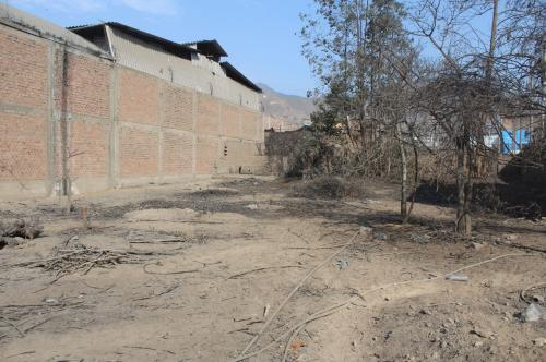 Terreno en Venta en Los Ciruelos -urb. San Carlos San Juan De Lurigancho 746
