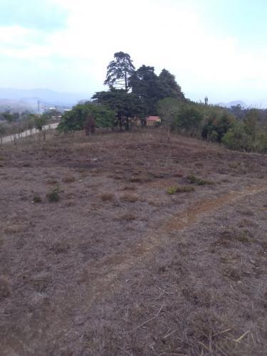 Vendo terreno ideal para tu futura casa en Carretera al Salvador.