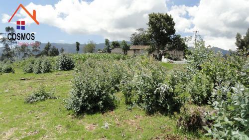 Vendo terreno de una hectarea en Otavalo sector Yambiro
