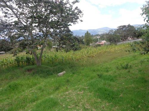 Terreno en Venta SECTOR COLLAQUÍ