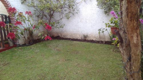 Casa MUY GRANDE Paseos del Sol, jardín, 4 recámaras