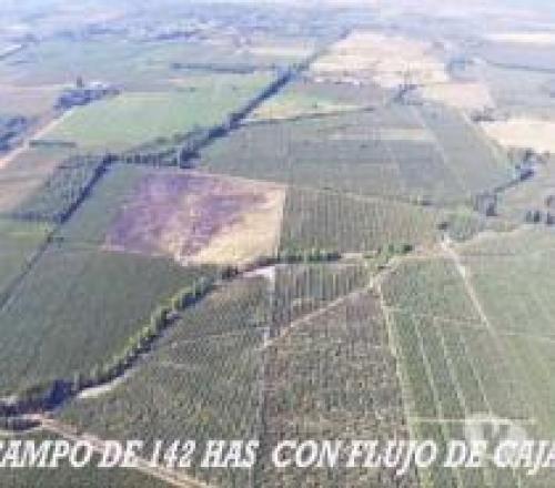 vendo hermoso terreno en la localidad de Montero Hoyos, Santa Cruz