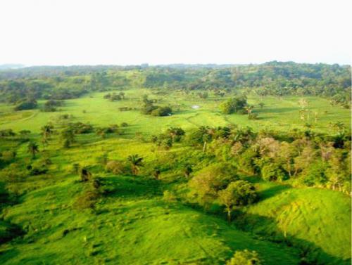CHIRIQUI – BOCA BRAVA - PANAMÁ