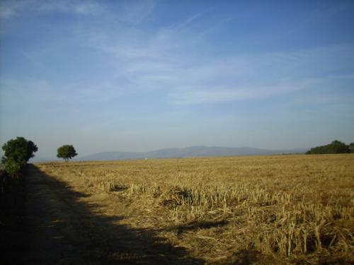Terreno en Acatic