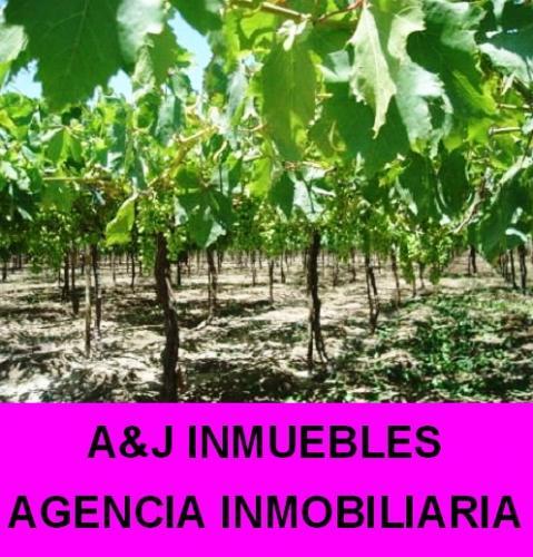 Inmobiliaria A&J INMUEBLES AGENCIA INMOBILIARIA